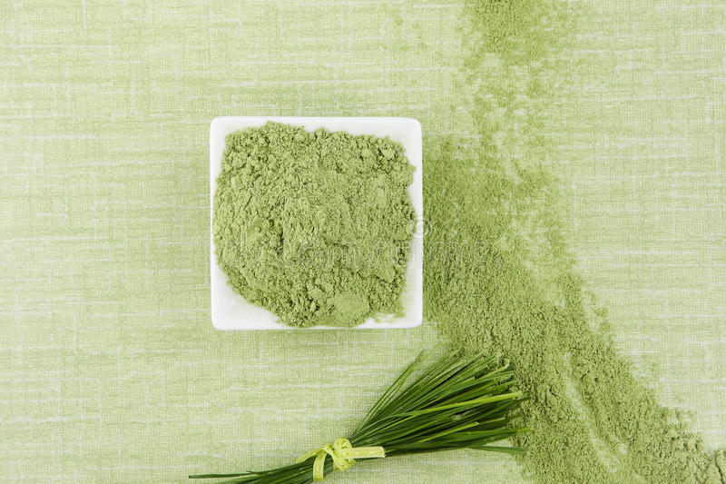 Wheatgrass. Wheatgrass ground and blades on green background, top view. Green superfood. Healthy herbal alternative medicine stock image