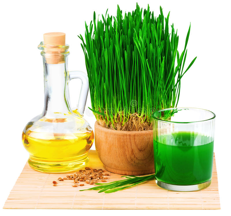 Wheatgrass juice with sprouted wheat and wheat germ oil on the m. At isolated on white background royalty free stock image