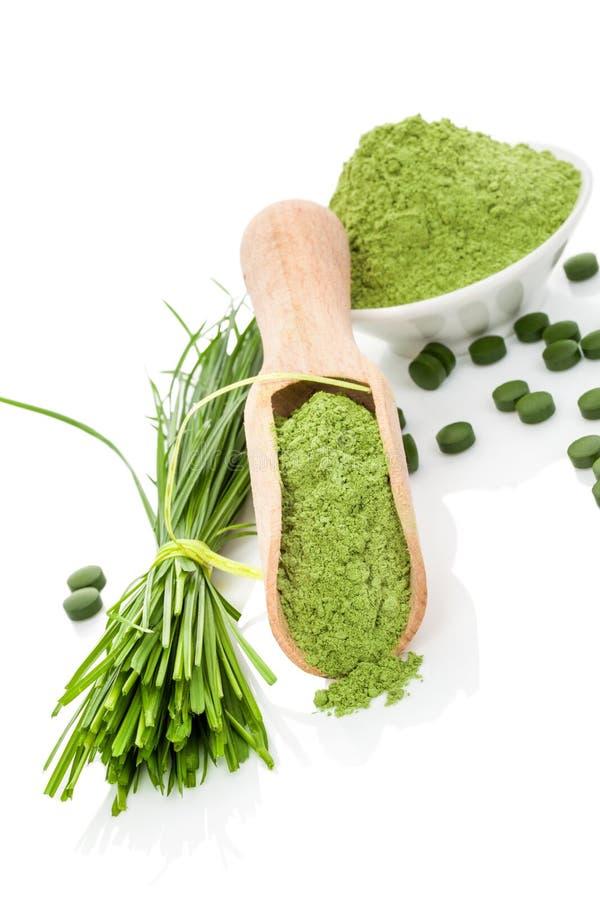 Wheatgrass powder and pills. Superfood. Natural herbal organic alternative medicine. Superfood. Wheatgrass powder, blades and green pills on wooden scoop and stock image