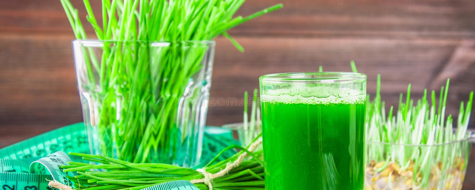 Wheatgrass shot. Juice from wheat grass. Trend of health royalty free stock photography