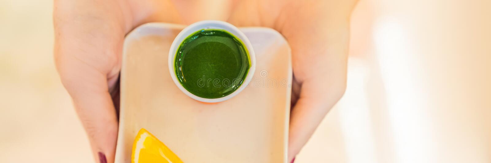 Wheatgrass shot. Juice from wheat grass. Trend of health. wheat grass BANNER, LONG FORMAT stock image