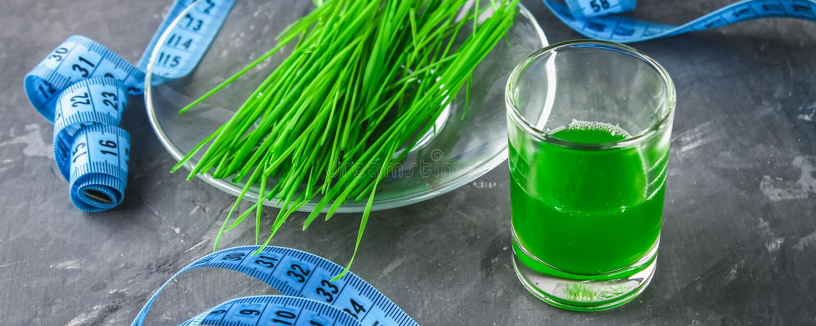 Wheatgrass shot. Juice from wheat grass. Trend of health. Wheatgrass shot. Juice from wheat grass. Trend of health stock images