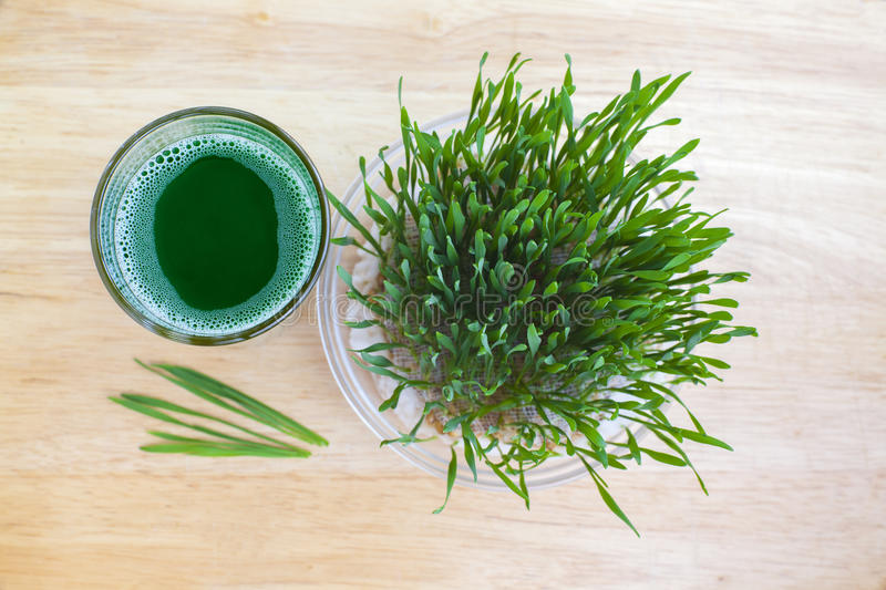Wheatgrass on wood. Wheatgrass in glassy pot and glass with wheatgrass juice on wooden surface royalty free stock images