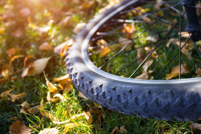 Wheel on a green lawn stock photos