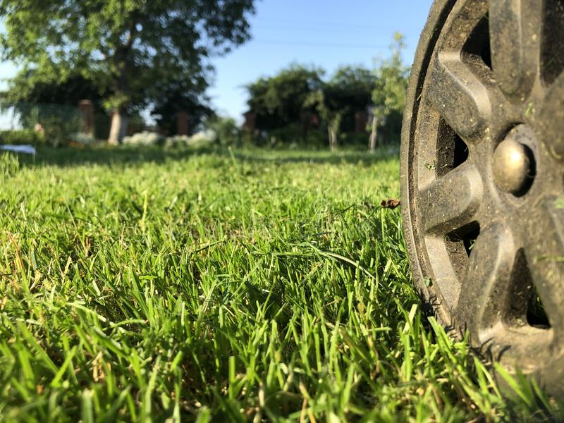 A wheel from a lawn mower on a truncheted farm lawn stock photo