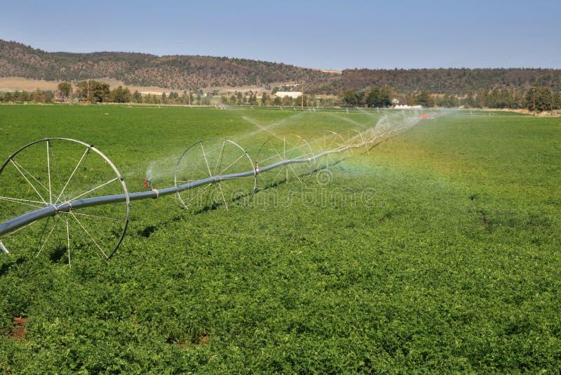 Download Wheel Line Irrigation System Stock Image - Image: 14222155