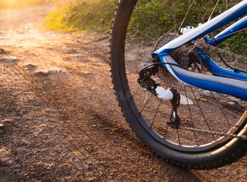Wheel mountain bike bicycle detail stock image