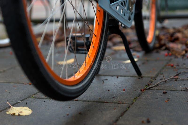 Wheel of orange bike in autumn royalty free stock photo