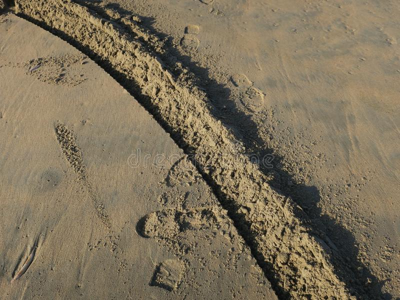 Wheel track and footsteps on the beach of Zandvoort. Netherlands royalty free stock photography