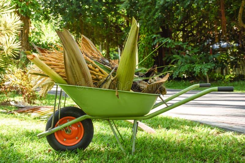 Wheelbarrow σύνολο των κλάδων φοινίκων ` s στον κήπο στοκ φωτογραφία με δικαίωμα ελεύθερης χρήσης