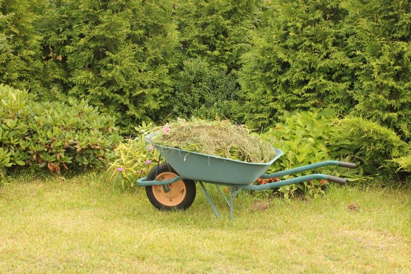 Wheelbarrow Fotografia Royalty Free