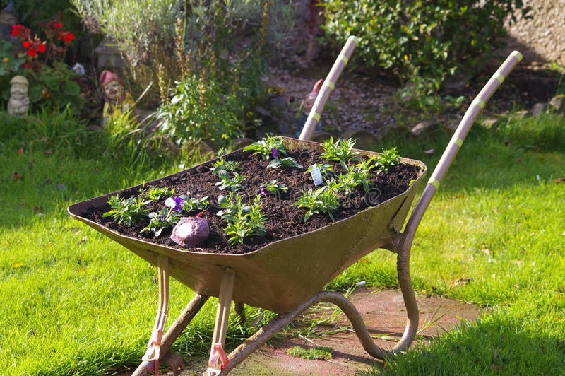 wheelbarrow imagem de stock royalty free