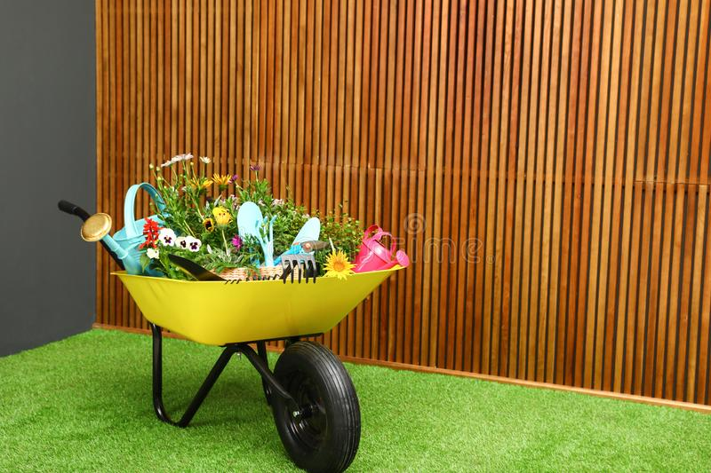 Wheelbarrow with flowers and gardening tools near wall. Wheelbarrow with flowers and gardening tools near wooden wall. Space for text royalty free stock image