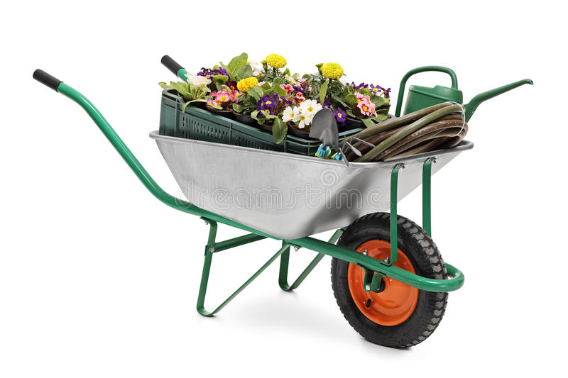 Wheelbarrow full of gardening equipment. Studio shot of a wheelbarrow full of gardening equipment and flowers isolated on white background royalty free stock photography