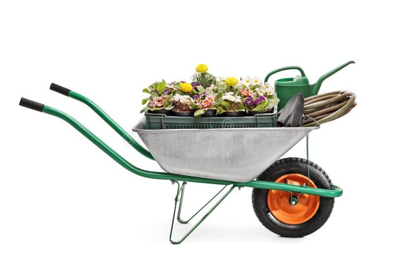 Wheelbarrow full of gardening equipment. Studio shot of a metal wheelbarrow full of gardening equipment and flowers isolated on white background stock photo