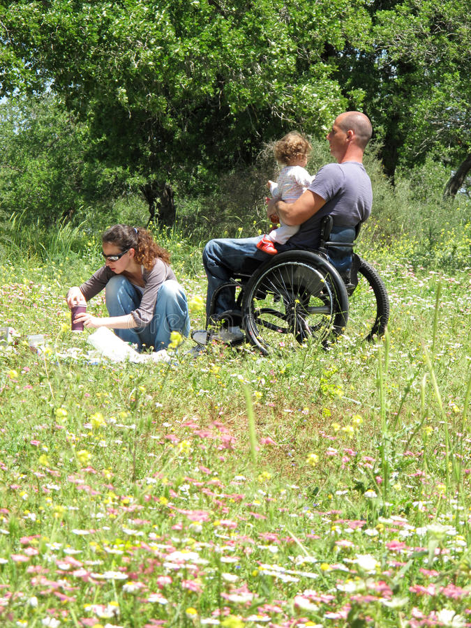 Wheelchair Picnic. Handicapped dad enjoying family picnic in a meadow of flowers royalty free stock photos