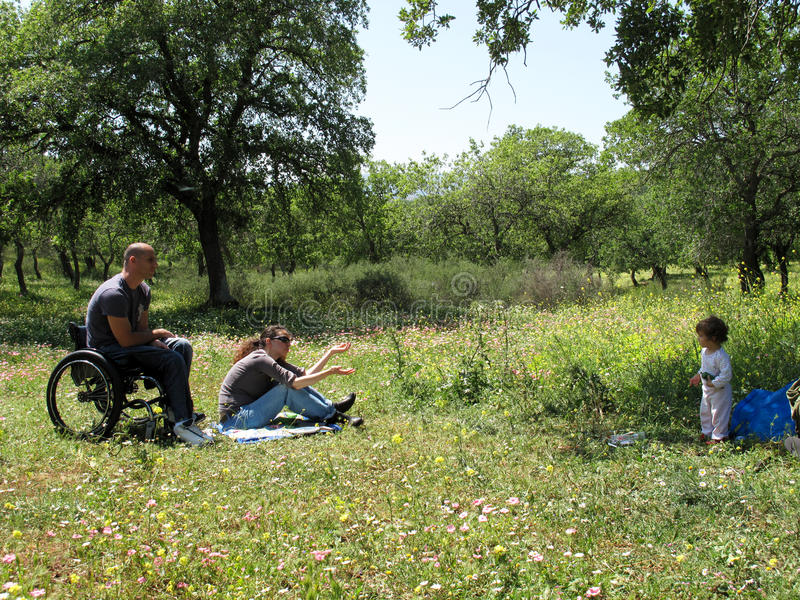 Download Wheelchair Picnic stock image. Image of field, food, explore - 10277001