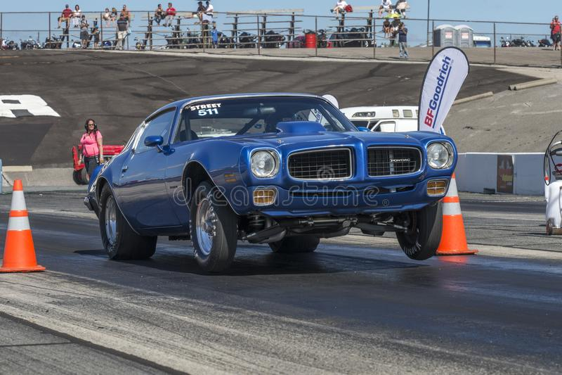 Wheelie de Pontiac Firebird fotografia de stock royalty free