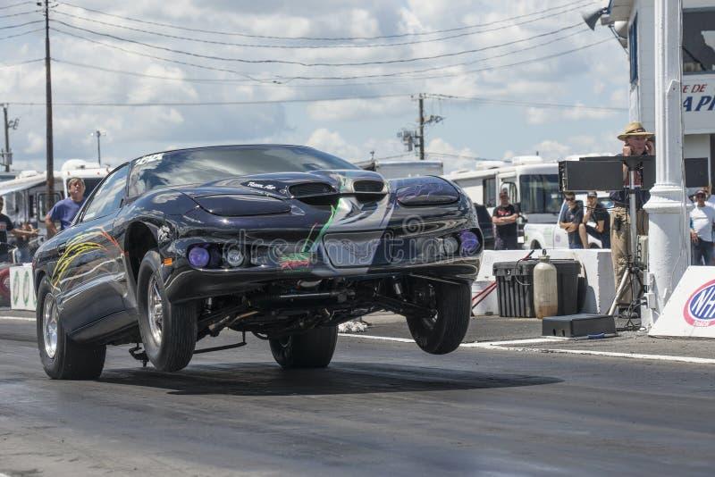 Wheelie Pontiac-Transportes morgens lizenzfreie stockfotos