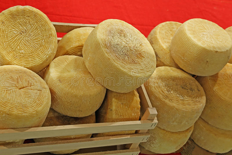Wheels of cheese called Caciotta in Italian language. Wheels of cheese called Caciotta in Italy for sale royalty free stock images