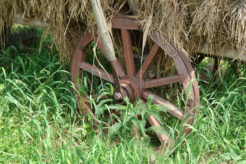 Download Whell stock photo. Image of colours, ancient, wheel, meadow - 771604