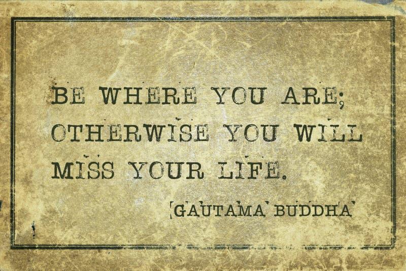 Where you are Buddha stock image
