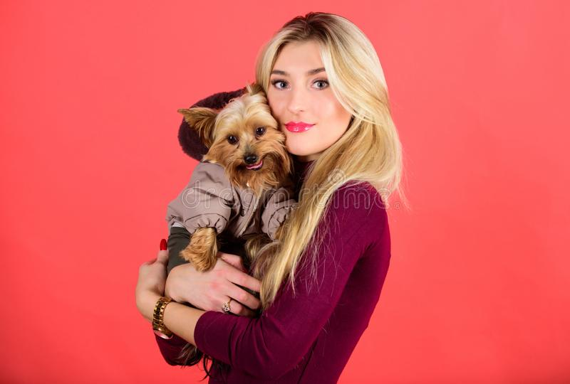 Which dog breeds should wear coats. Girl hug little dog in coat. Woman carry yorkshire terrier. Dressing dog for cold. Weather. Make sure dog feel comfortable royalty free stock photo