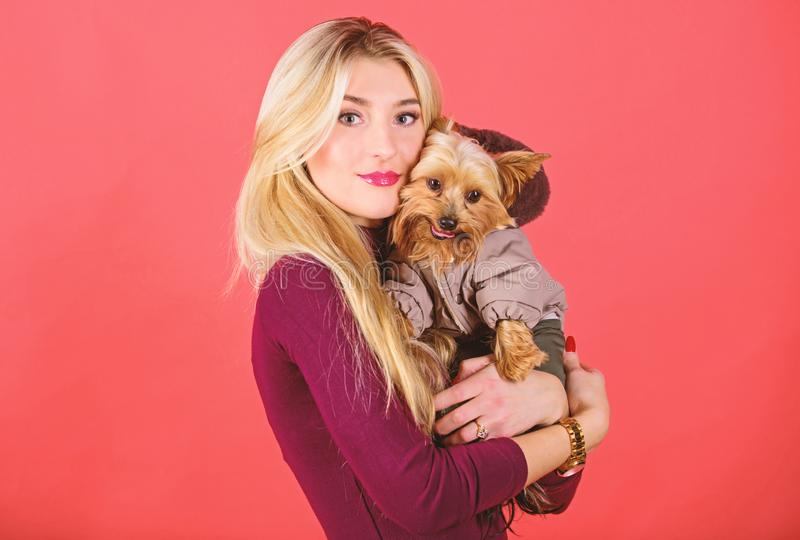 Which dog breeds should wear coats. Girl hug little dog in coat. Woman carry yorkshire terrier. Dressing dog for cold. Weather. Make sure dog feel comfortable stock photos