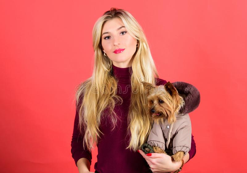 Which dog breeds should wear coats. Woman carry yorkshire terrier. Dogs need clothes. Girl adorable blonde hug little. Dog in coat. Apparel and accessories. Pet royalty free stock image