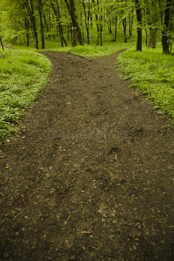 Download Which way? stock image. Image of environment, outside - 5077503
