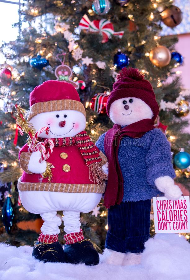 Whimsical snowman couple dressed for the holidays stock photos