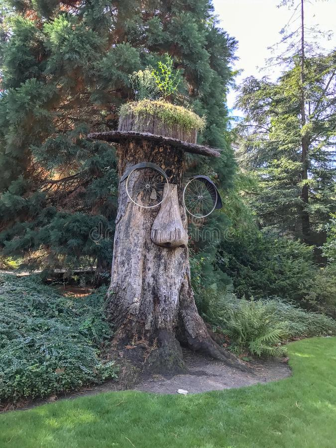 Whimsical tree trunk sculpture of man`s face in Antwerp Zoo, Bel royalty free stock photo
