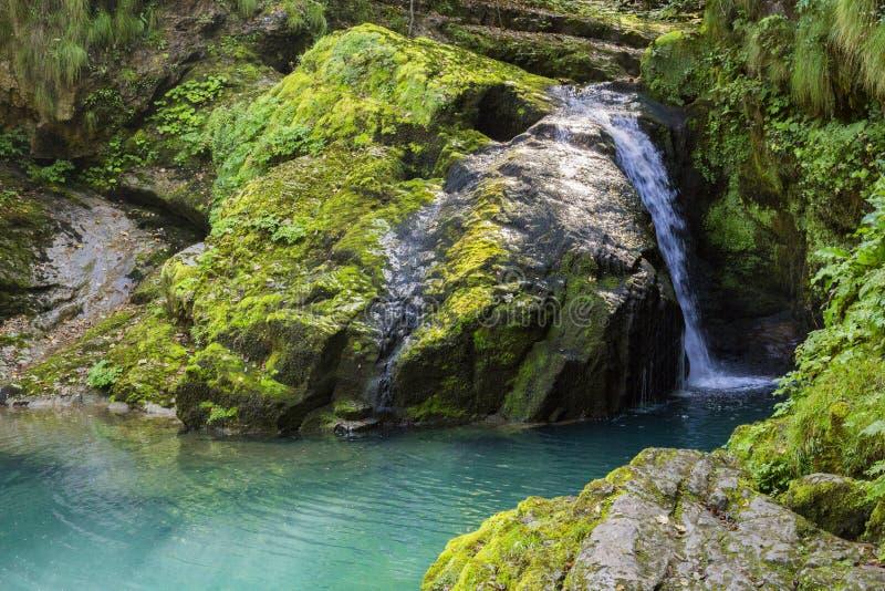 Whirlpool verde imagens de stock