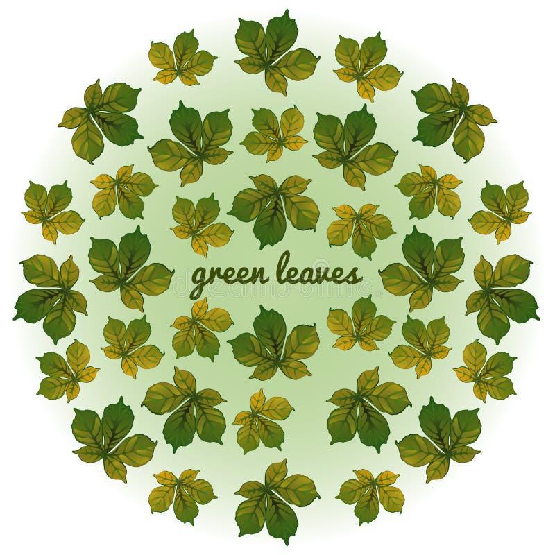 Whirlwind των πράσινων φύλλων στο άσπρο υπόβαθρο απεικόνιση αποθεμάτων