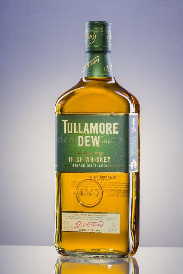 Whiskey della rugiada di Tullamore sul fondo di pendenza immagine stock