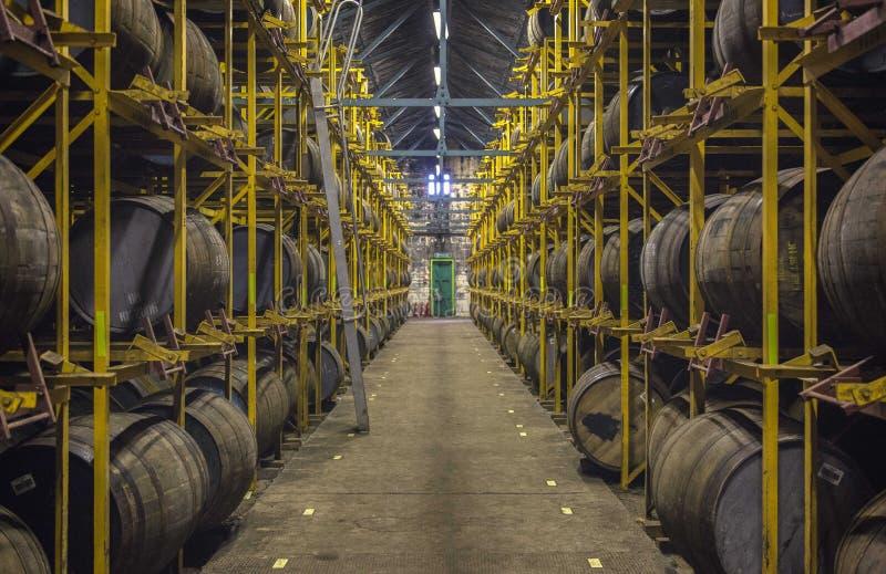 Whiskey en esclavage complètement des barils photographie stock libre de droits