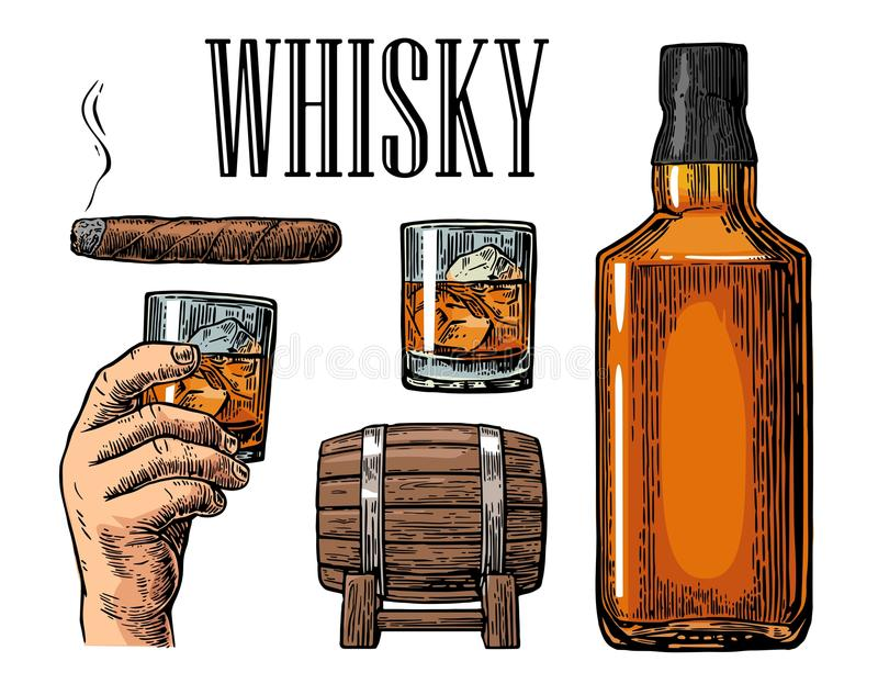Whiskey glass with ice cubes, barrel, bottle and cigar. Vector vintage color illustration for label, poster, invitation to a party. Isolated on white vector illustration