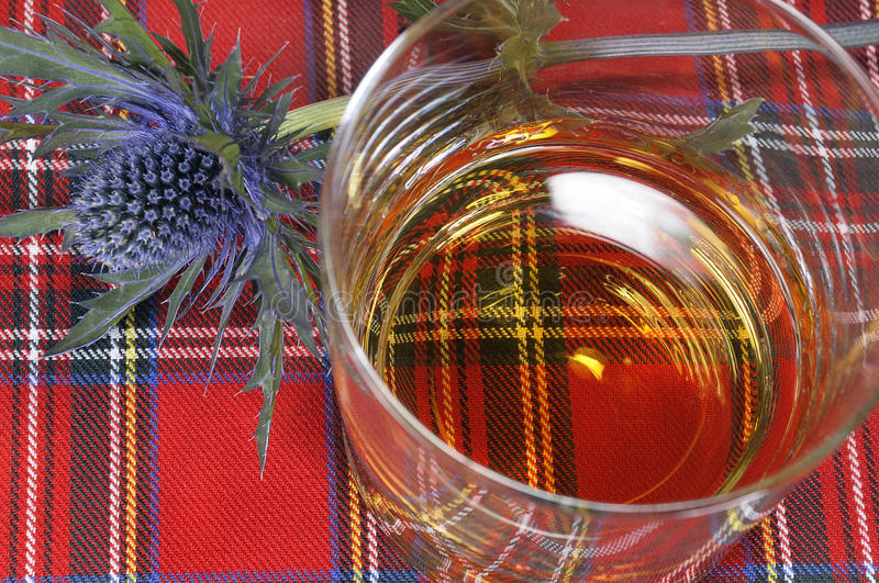 Whiskey and Thistle on Tartan. A glass of single malt whiskey and a Scottish thistle on a tartan or plaid background royalty free stock photos