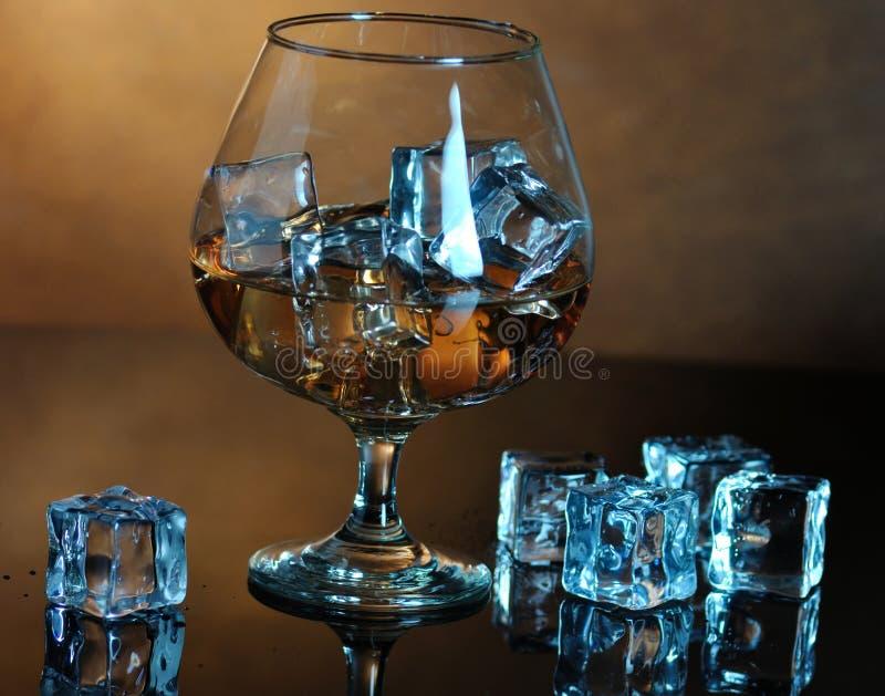 whisky fotografia stock