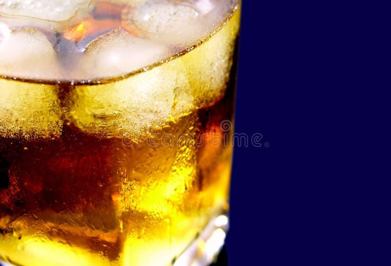 Whisky obraz royalty free