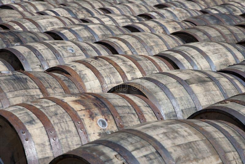 Whisky casks stock images