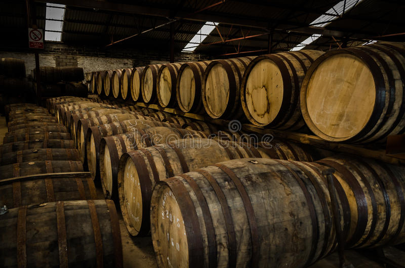 Whisky casks royalty free stock image