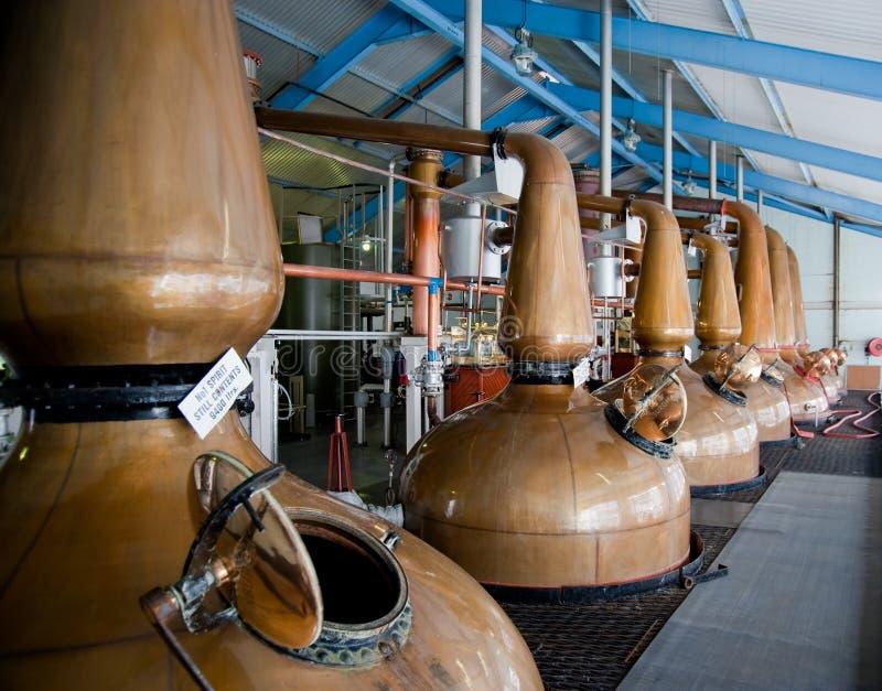 Whisky distillery stills royalty free stock images