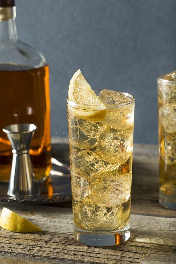 Whisky Highball med Ginger Ale royaltyfria foton
