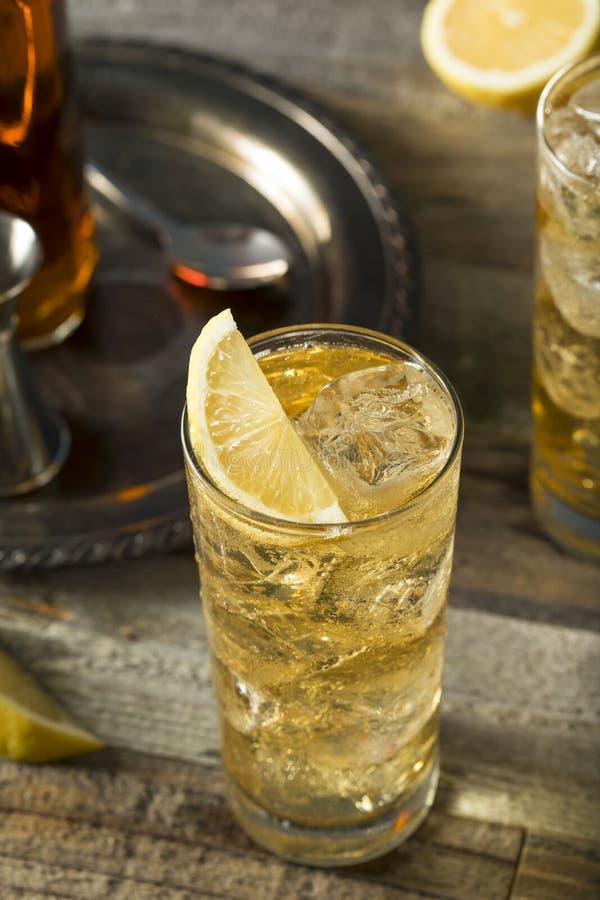 Whisky Highball z Imbirowym Ale zdjęcie royalty free
