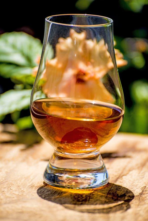 Whisky med solskugga arkivfoto