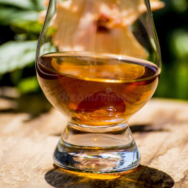 Whisky med solskugga arkivbilder