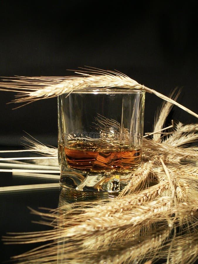Whisky und Weizen stockbilder