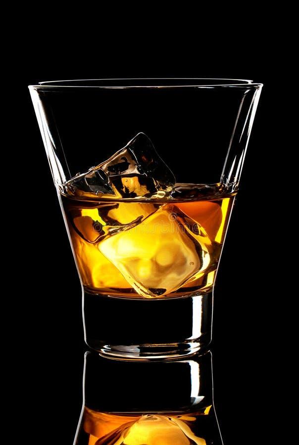 Whiskyexponeringsglas med iskuber royaltyfria foton