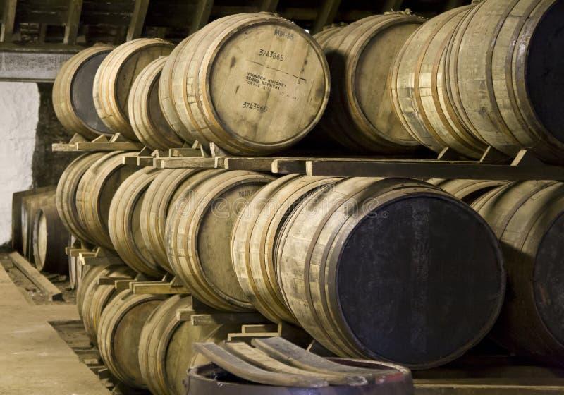 Whiskyfässer in einer Brennerei lizenzfreies stockfoto